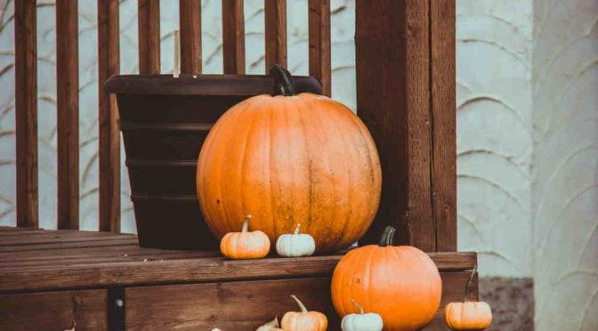 Cuatro ideas de decoración para Halloween